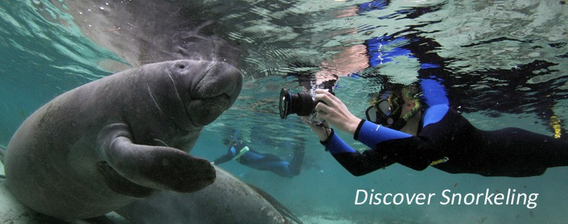 Discover-Snorkeling1
