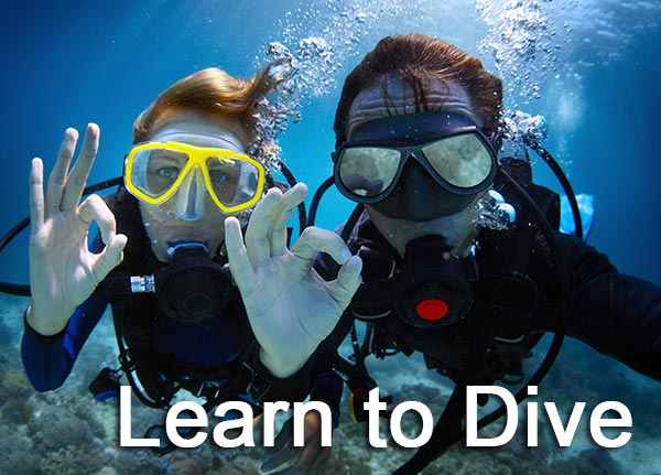 aquaventure-dive-photo-learn-to-dive