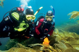 Dry Suit Diver Specialty Courses