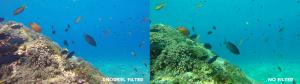 GoPro-Snorkel-Filter-Comparison