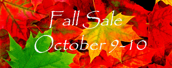 fall-sale-banner-2