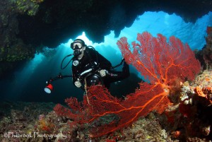 diver in Fiji