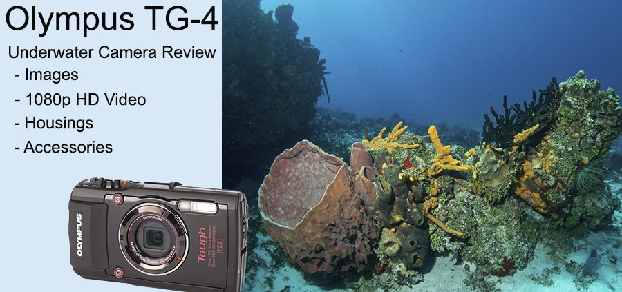 Olympus TG-4 review banner