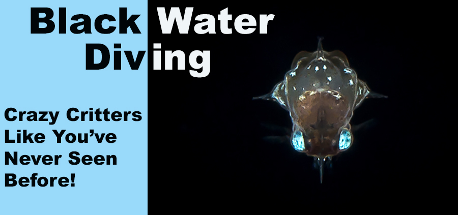 black water diving