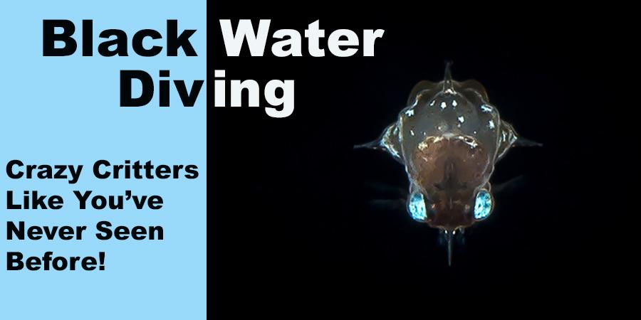 black water diving